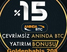 golden bet 208